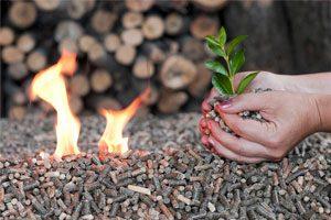 biomasa y pellets